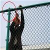 球场护栏网 体育场围栏定制安装