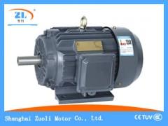 YE2普通电机_YE2系列电机型号_YE2电机技术参数