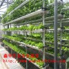 阳台种菜盆架子 育苗海绵管道种菜棉 立体屏风种植系统批发