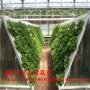 阳台大棚温室水培架 螺旋仿生水培种植立柱 可上门指导安装