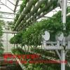 温室立体栽培设施 蔬菜种植栽培柱 无土栽培设备鑫华定制
